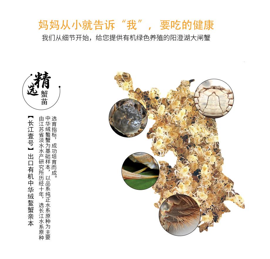 2017平步青云-券_11.jpg