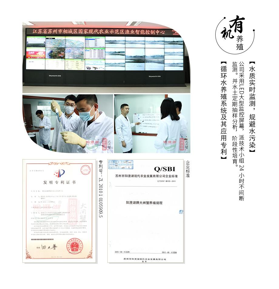 2017平步青云-券_12.jpg