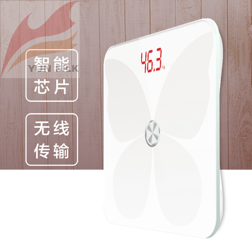 香山 电子厨房秤